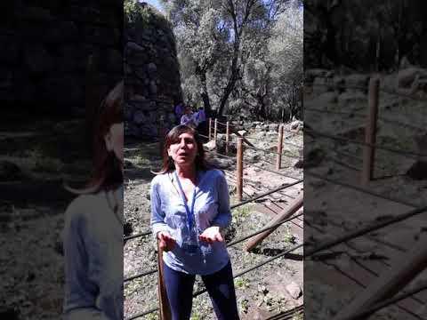Prima parte dell'intervista a Patrizia Carta, Presidente della Cooperativa Archeotour