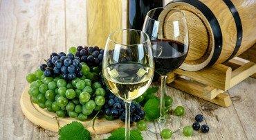 Consorzi di tutela vitivinicola: più spazio al turismo