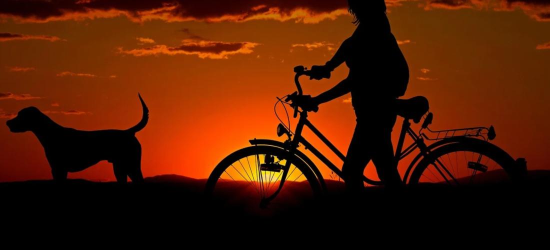 Italian Green Road, la grande bellezza in bici