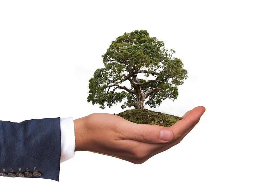 I viaggi d'affari affinano le politiche green