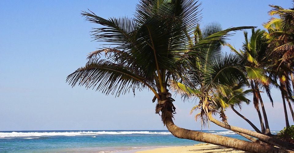 Segnali di ripresa per la Repubblica Dominicana
