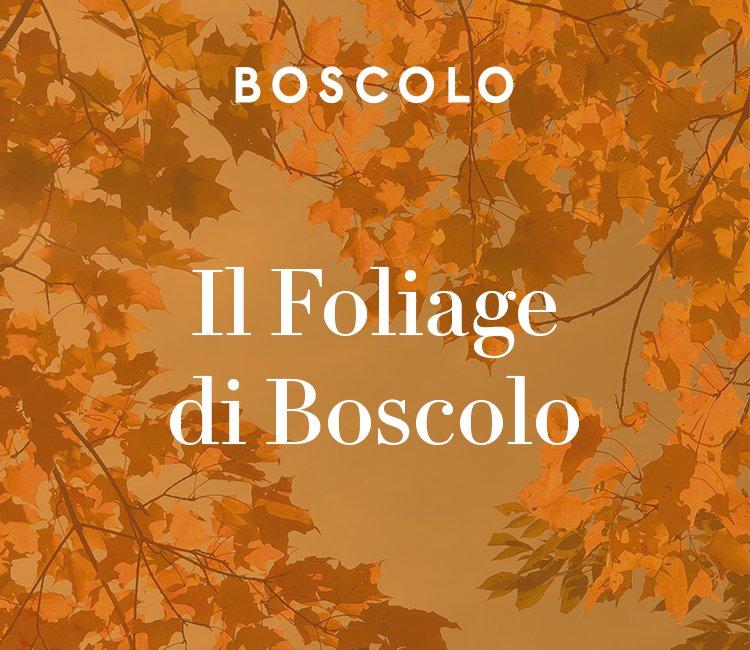 Boscolo, catalogo d'autunno nel nome del foliage