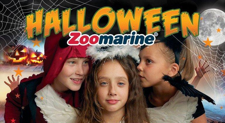 Zoomarine si veste da Halloween